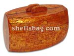 Capiz Shell Handbag