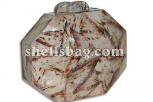 Fashion Shell Clutch Bag