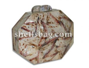 Fashion Shell Clutch Bag