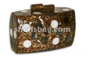 Fashionable Shell Handbags