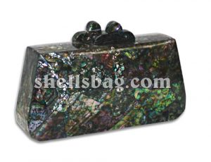 Paua Shell Fashion Bag