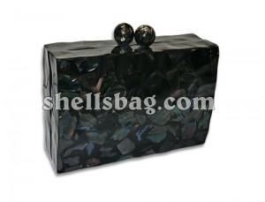Fashion Evening Handbag and bags