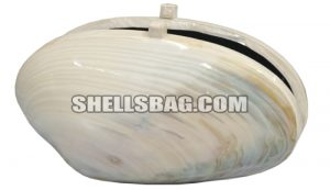 kabibe shell clutch bag